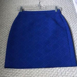 J. Crew Skirt 00P